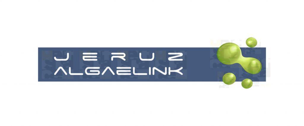 portfolio Portfolio jeruz algaelink
